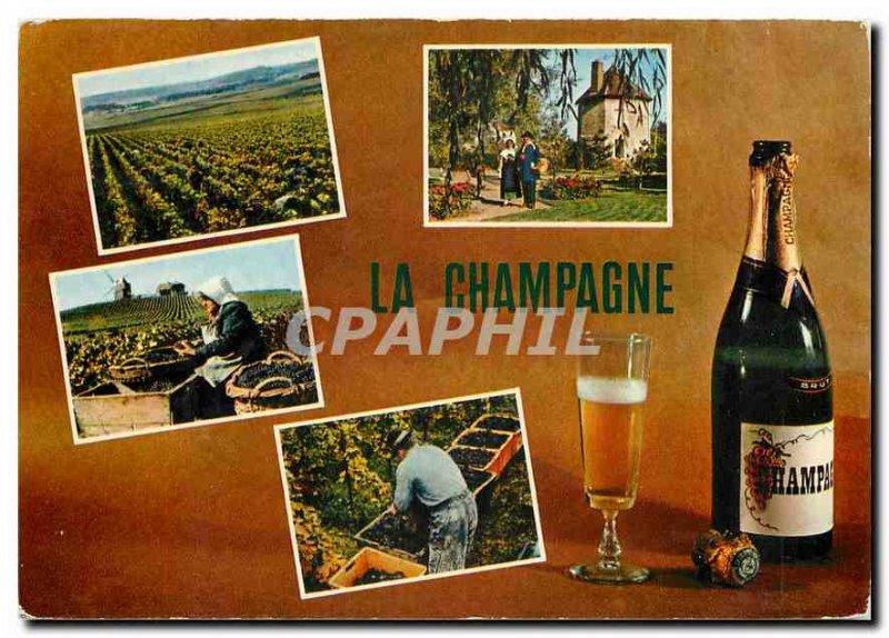 Postcard Modern Champagne