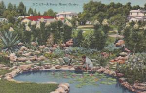 Florida A Pretty Miami Garden 1949 Curteich