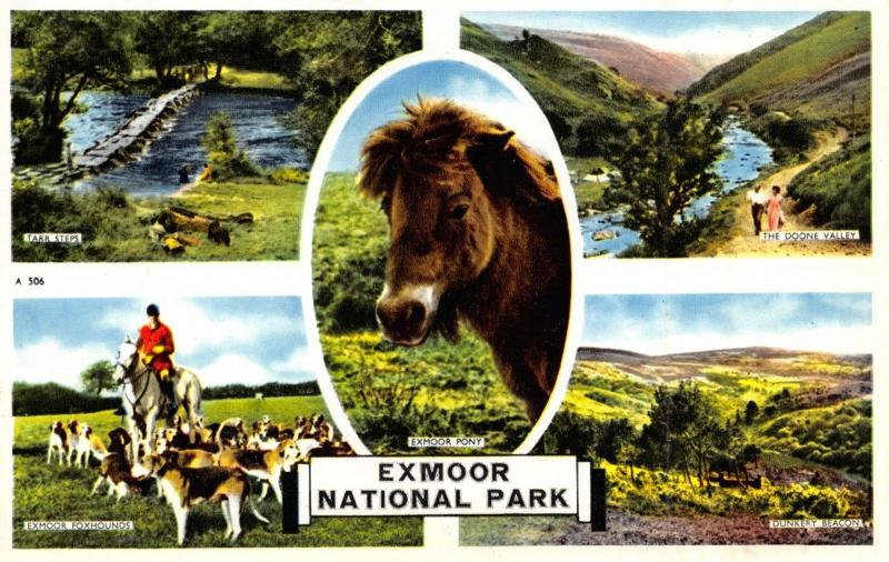 Exmoor National Park Multi View Vintage Postcard in Excellent Condition P56