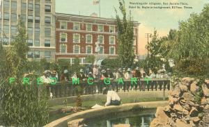 1913 El Paso Texas Postcard: Alligator Watching Near Saint Regis Hotel - Rare