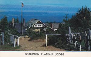 Forbidden Plateau Lodge, Courtenay, British Columbia, Canada, 40-60´s