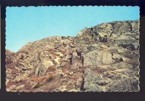 Summit Mount Monadnock, New Hampshire/NH Postcard,View Of All New England States