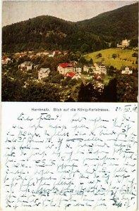 CPA AK Bad Herrenalb- blick auf die Konig Karlstrasse GERMANY (903021)