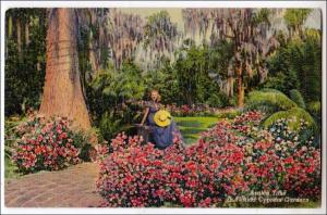 Azalea Time, Cypress Gardens FL