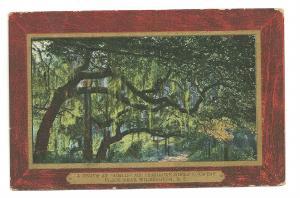 1910's Wilmington, North Carolina