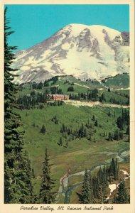 USA Washington State Paradise Valley Mt. Rainier National Park 03.78