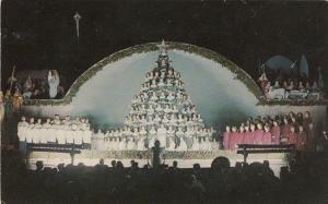 FT MYERS, Florida, 50-60s ; Human Christmas Tree Choir