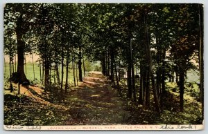 Little Falls New York~Burwell Park~Lover's Lane~Walk Thru Trees~1915 Postcard