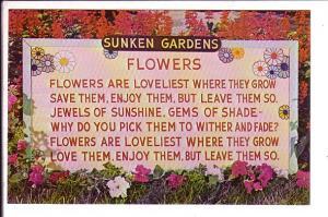 Sunken Gardens, Flowers, St Petersburg, Florida