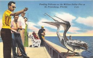 St Petersburg Florida~Feeding Pelicans @ Million Dollar Pier~Man w Baby~Postcard