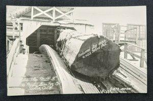 Mint Vintage Pacific Lumber Co Scotia California Real Photo Postcard RPPC