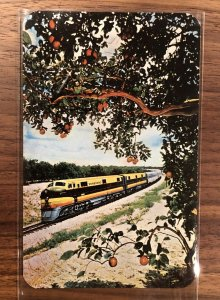 Seaboard Air Line's THE SILVER METEOR New York-Florida 1950s Trains Postcard