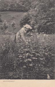 TUCK #874; Older woman wearing bonnet picking Meadowsweet flowers, 00-10s