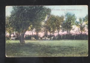MORRISONVILLE ILLINOIS DEER PARK VINTAGE POSTCARD SHENANDOAH IOWA