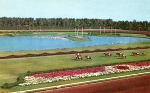 FL - Hialeah, Hialeah Race Track