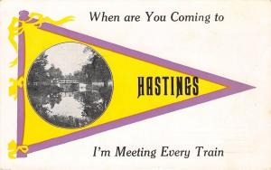Hastings Michigan~I'm Meeting Every Train~Wagon Bridge~1914 Pennant Postcard