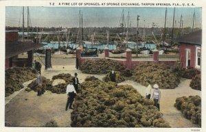 TARPON SPRINGS, Florida, 1930-40s; A fine lot of Sponges, at Sponge Exchange