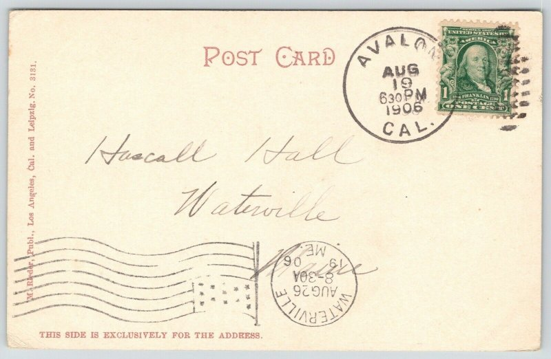 Avaon~Santa Catalina Island California~Victorians Stroll Tent City~1906 Postcard
