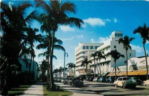Miami Beach Florida~Fabulous Lincoln Road~Slim Coconut Palms~1950s Cars