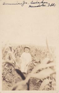 RP: Little Boy in Crop Field, MENDOTA, Illinois, 1910s