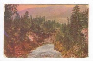 Down Cascade Canon, Cascade City, B.C., Canada, PU 1908