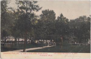 Michigan MI Postcard 1907 DOWAGIAC PARK Three Days after SNOWSTORM