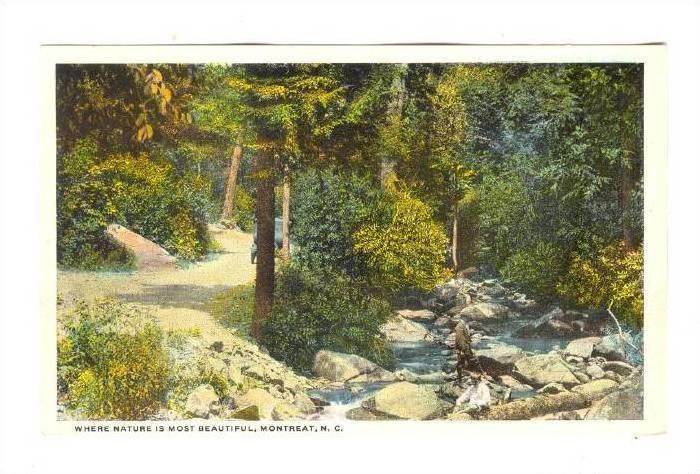 Montreat , North Carolina, 00-10s Park trail & stream