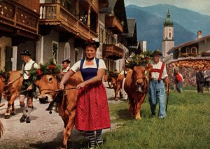 Almabtrieb,Austria BIN