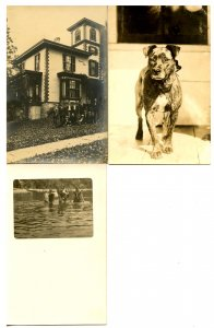 3 RPPC's - Dog, Swimmers, Sigma Nu Fraternity House & Boys