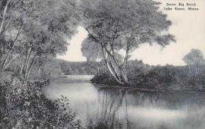 Maine Lake Kezar Down Big Brook Albertype