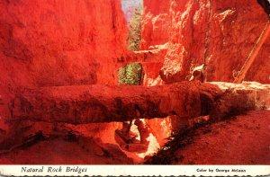 Utah Bryce Canyon National Park The Two Natural Bridges