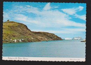 NEWFOUNDLAND - Icebergs In Entrance St. John's Harbour - 1960s - Unused