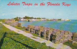 Florida Conch Key Lobster Traps In The Florida Keys