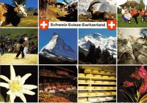 Schweiz-Suisse-Switzerland, multi view, 1991 used Postcard