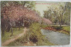 Pathway Along Minnehaha Creek Minneapolis MN 1913