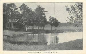 Vineland New Jersey~Tall Pole Looms Over Small Pond @ Little Robin~House~c1906
