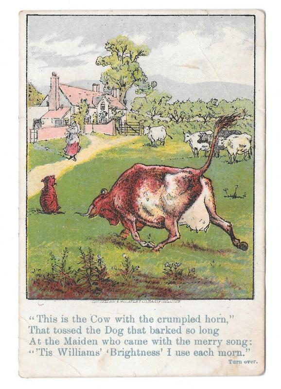 Victorian Trade Card Glastonbury CT D.W. Williams Soaps Cow w Crumpled Horn
