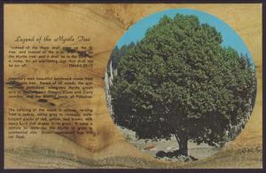 Legend of the Myrtle Tree Postcard