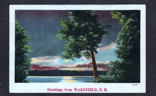NH Moonlight Greetings WAKEFIELD NEW HAMPSHIRE Postcard
