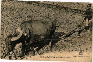 VIETNAM INDOCHINE - Tonkin - Buffle au labour (190113)
