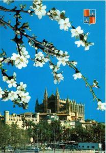 CPA Espagne-Mallorca-Palma de Mallorca-La Cathédrale (323467)