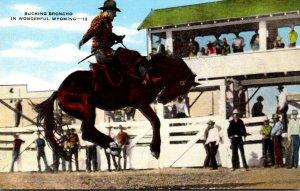 Wyoming Rodeo Scene Bucking Bronco