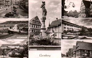 Multiview Leonberg,Germany BIN