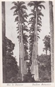 RIO DE JANEIRO, Brazil, 1910-20s; Jardin Botanico