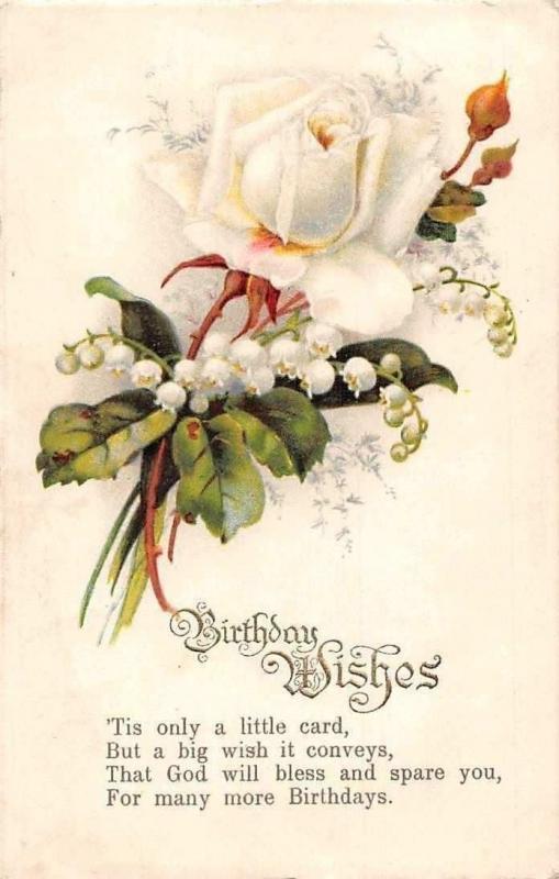 Postcard Birthday Wishes White Rose Flower Fleur HipPostcard
