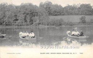 Silver Lake - Beaver Brook, New York