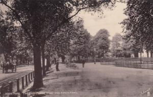 HYDE PARK , England , 1908 ; Serpentine Road & Bandstand ; TUCK 1857