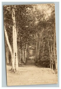 Vintage 1900's Photo Postcard Birch Drive Antrim New Hampshire