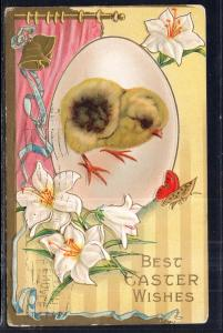 Best Easter Wishes Chick Flowers BIN