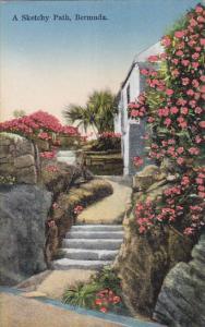 Bermuda A Sketchy Path